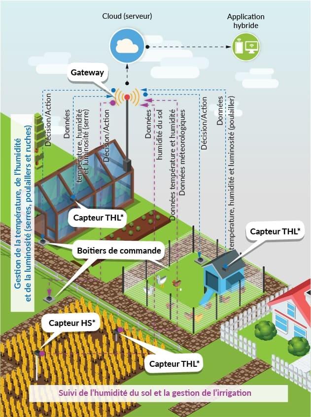 fiche solution Smart agriculture